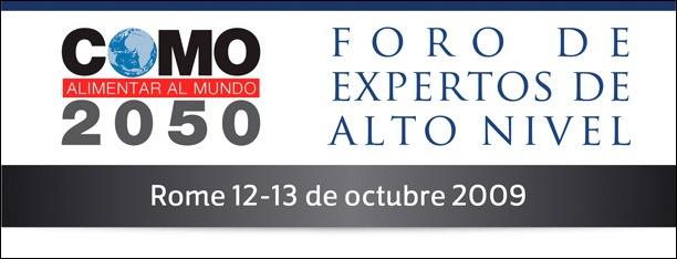 Foro de expertos de alto nivel, FAO