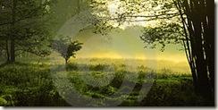 paisaje_mistico2